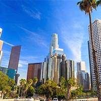 Los Angeles Succession Management